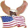 View AMERICAN BALD EAGLE WITH FLAG PIN
