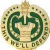 View  Army Drill Instructor  Badge This We'll Defend  Pin (We Have Rolled Back Our Pin Prices)