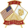 View W.W.II VETERAN FLAG FLAGS PIN