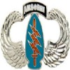 View ARMY AIRBORNE WINGS PIN SPECIAL FORCES