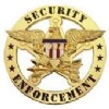 View SECURITY ENFORCEMENT BADGE - Circle/Eagle - Traditional